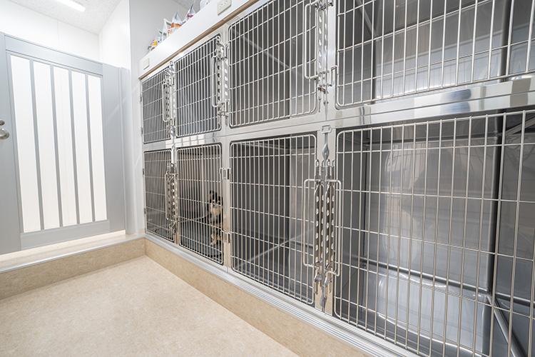 犬専用入院室